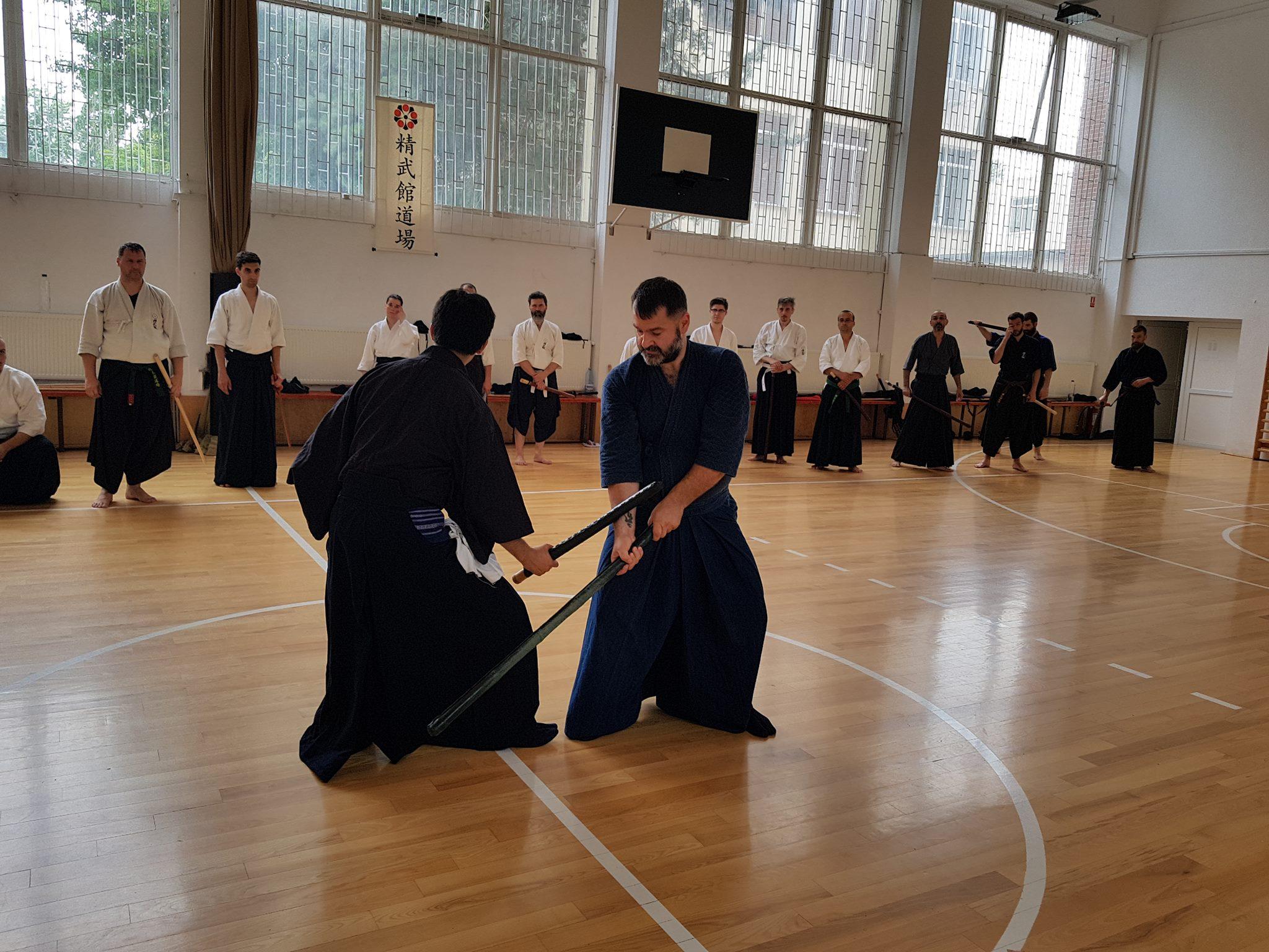 Hikita Shinkage Ryu Seminar 03
