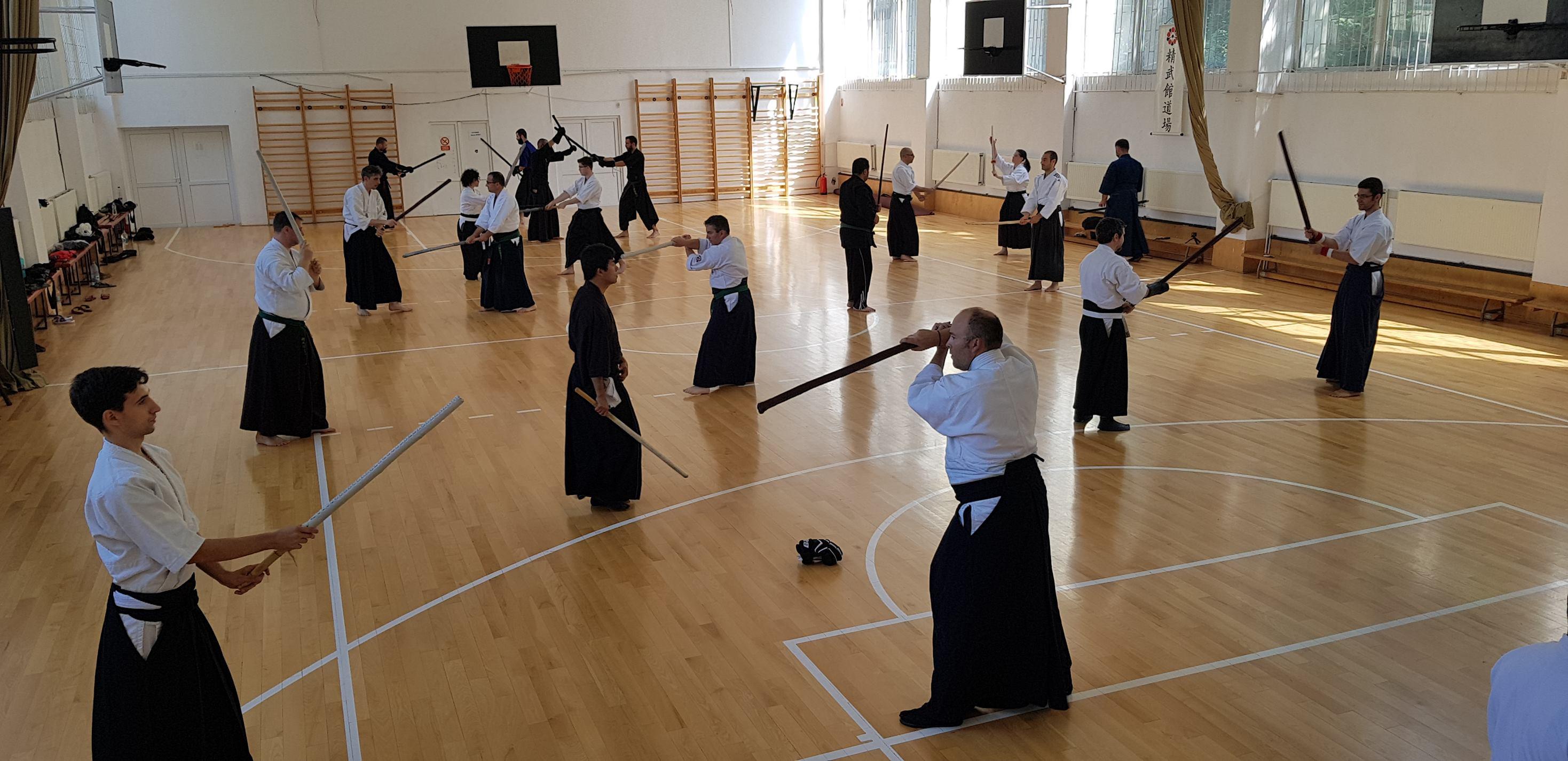 Hikita Shinkage Ryu Seminar 01