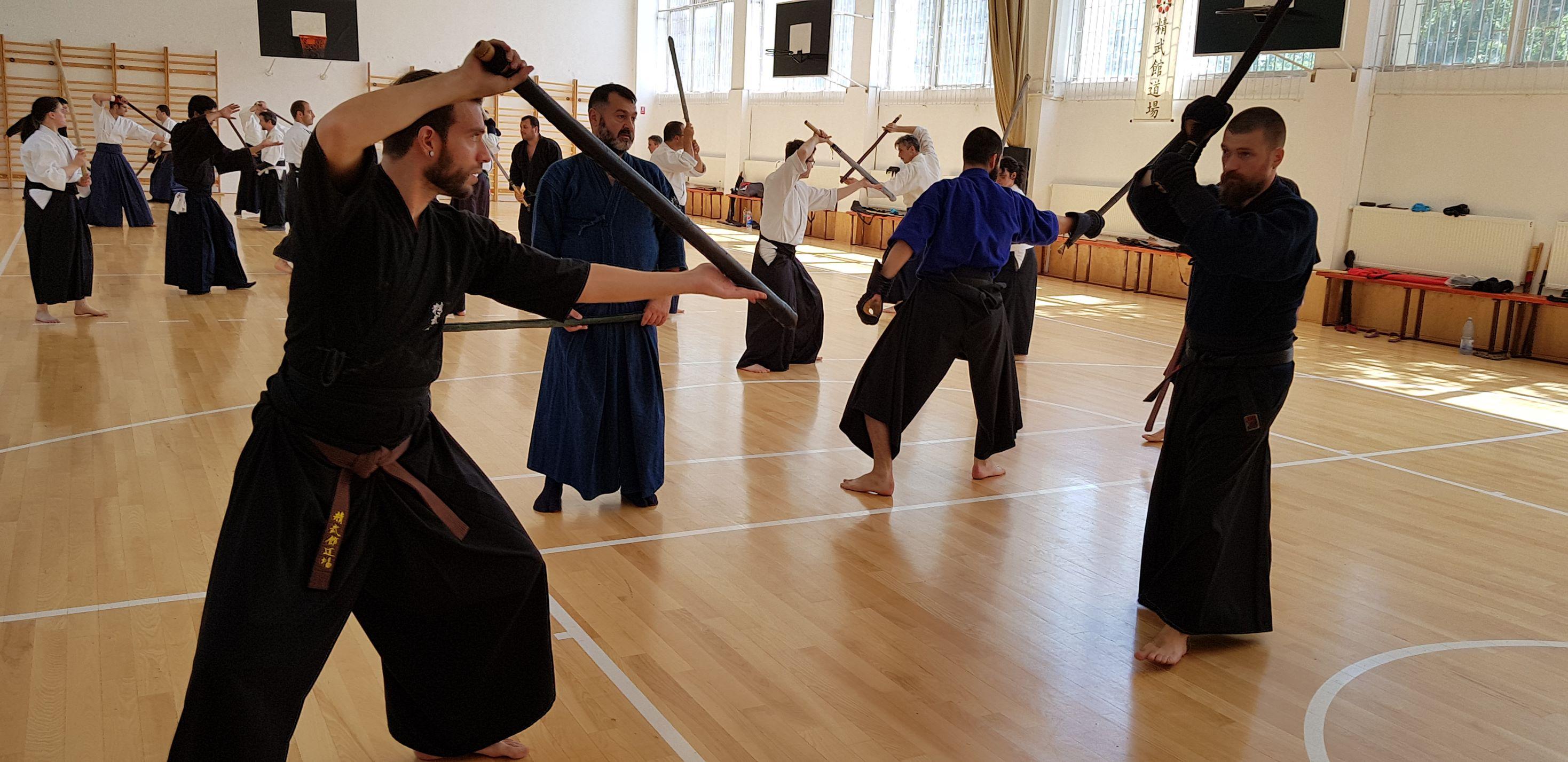 Hikita Shinkage Ryu Seminar 02