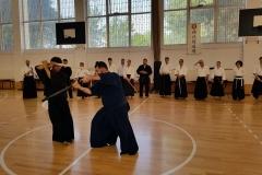 Hikita Shinkage Ryu Seminar 00