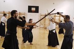 Niten Ichi Ryu training in Seibukan Dojo 01