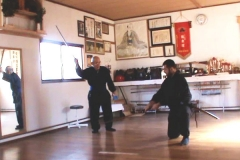 Antrenament Kenjutsu Taisha Shinkage Ryu